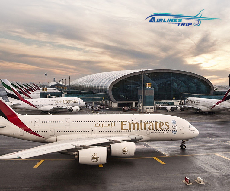 6 Reasons Why You Should Book Emirate's Airline Tickets Over Other Company